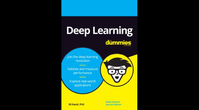 DL-Dummies-Guide2